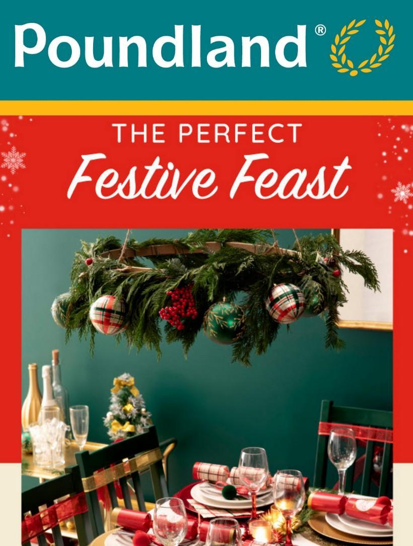 Poundland Offers from December 13